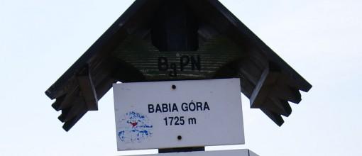 Babia Góra (1725m)